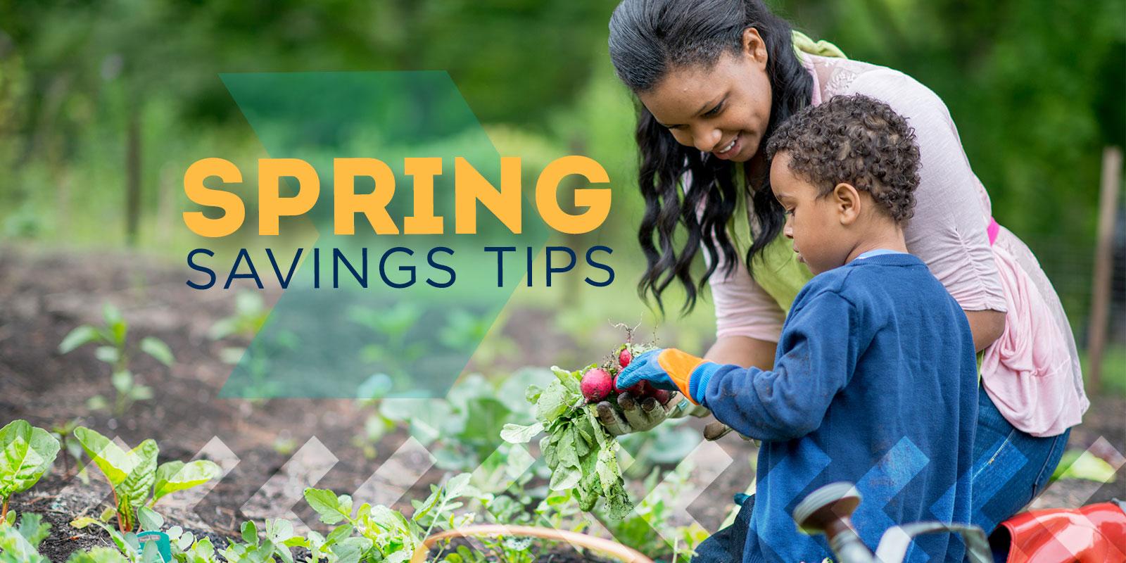 Spring Savings Tips